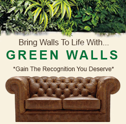 Gsky | GSky Green Walls | GSky Plant Walls | Green Wall Systems| Denver| Colorado